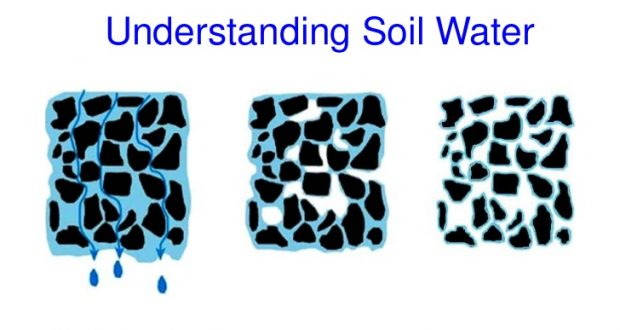 Types of Soil Water