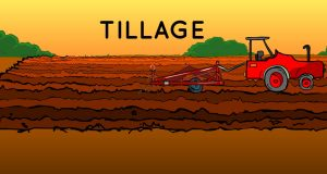 Objectives of Tillage | Arid Agriculture