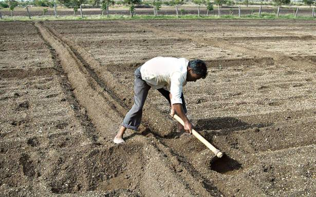 Arid Agriculture and Moisture Deficiency | Arid Agriculture
