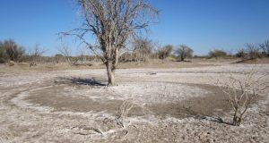 Problems of Dryland Agriculture