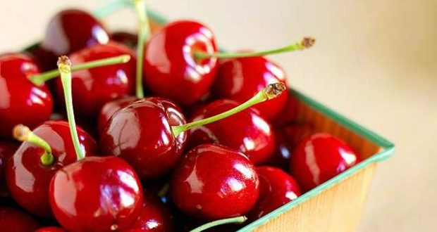 how to grow | Agriculture | growing cherries