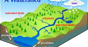 What is a Watershed? | Arid Agriculture