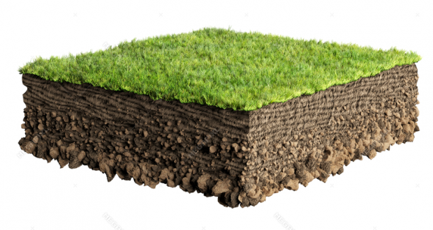 Natural Soil Profiles | Arid Agriculture